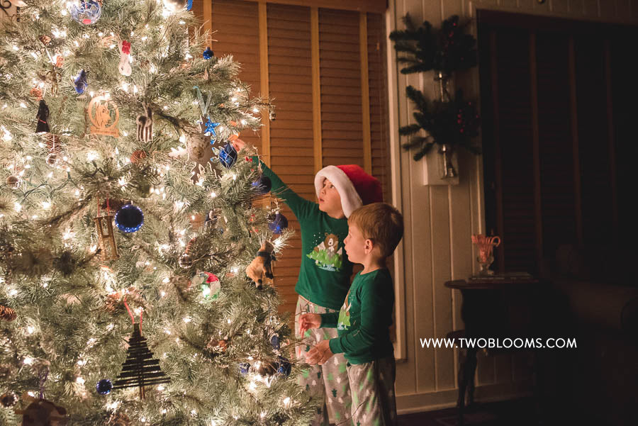 christmas-tree-portraits-1-of-5