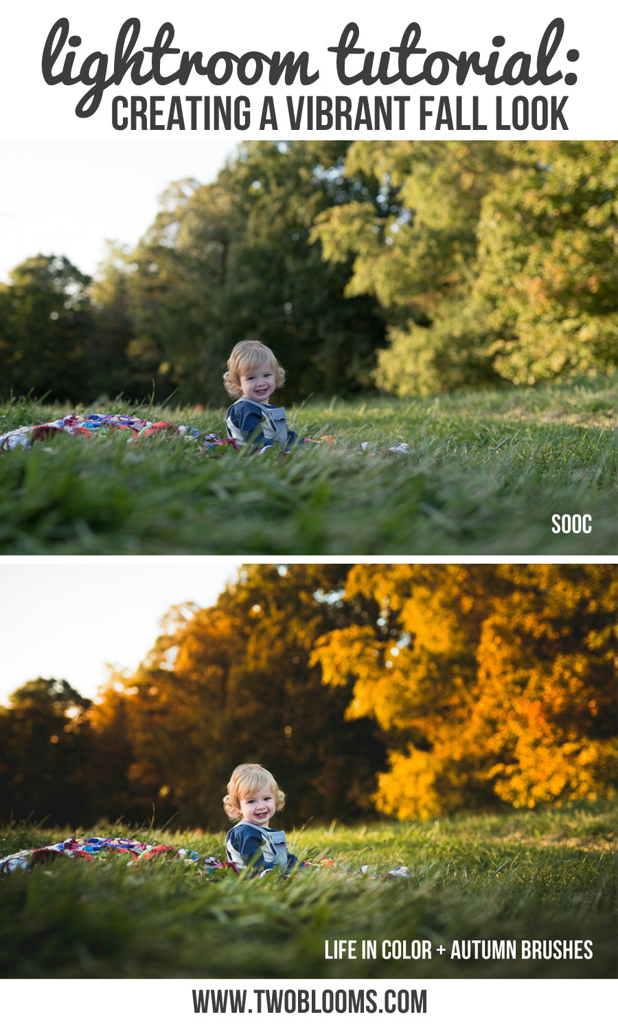 creating-a-fall-look-in-lightroom
