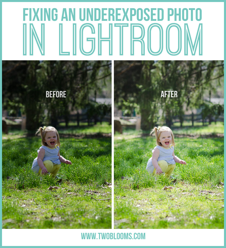 fixing an underexposed photo in Lightroom