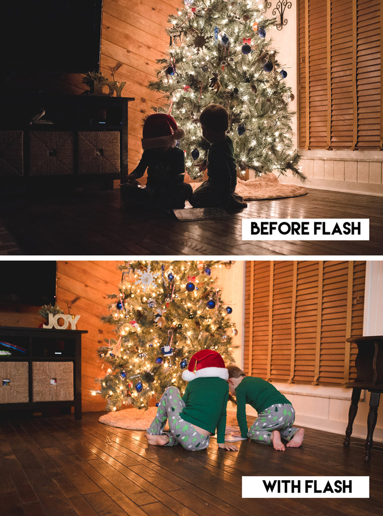 flash-fill-christmas-tree-portraits
