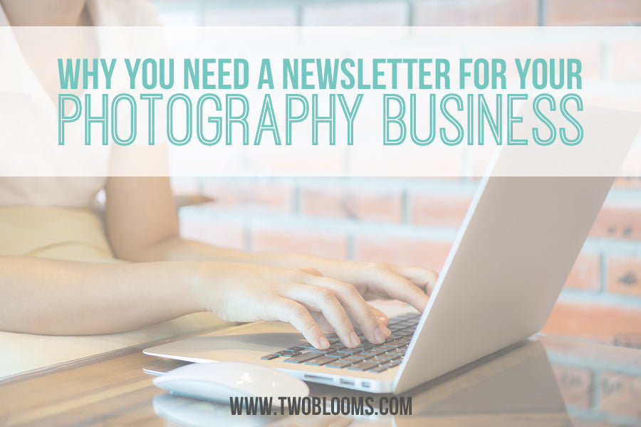 why you need a newsletter for photography business