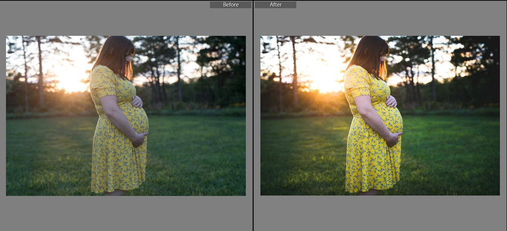 lightroom presets with adjustment