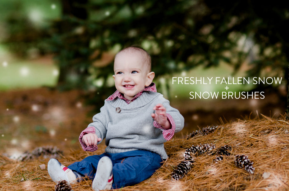 winter Lightroom Presets and snow brush