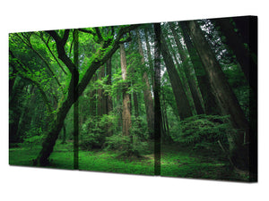 Green Trees Forest Framed UNframed canvas wall art panel print picture 3 Panel : cheap canvas prints wall paintings pictures
