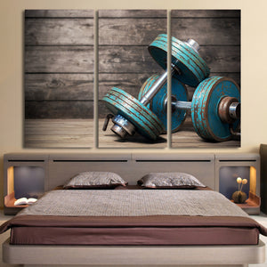 Dumbbells fitness bodybuilding gym inspirational 3 piece Canvas wall art print : cheap canvas prints wall paintings pictures