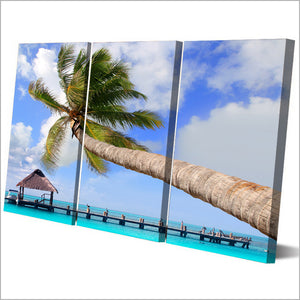 Coconut Trees Picture 3 piece wall art on panel canvas print picture : cheap canvas prints wall paintings pictures