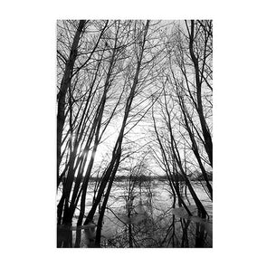 Nordic Style Forest Modern Art Print,Home Decorators,[tags] - DeliteShopping