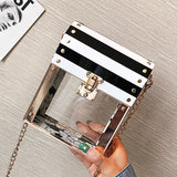 Modern Acrylic Transparent Women Clutch Bag,,[tags] - DeliteShopping