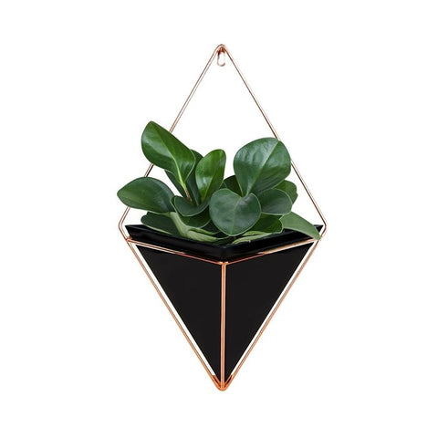 Modern Indoor Wall Decor Geometric Succulents Container,Home Decorators,[tags] - DeliteShopping