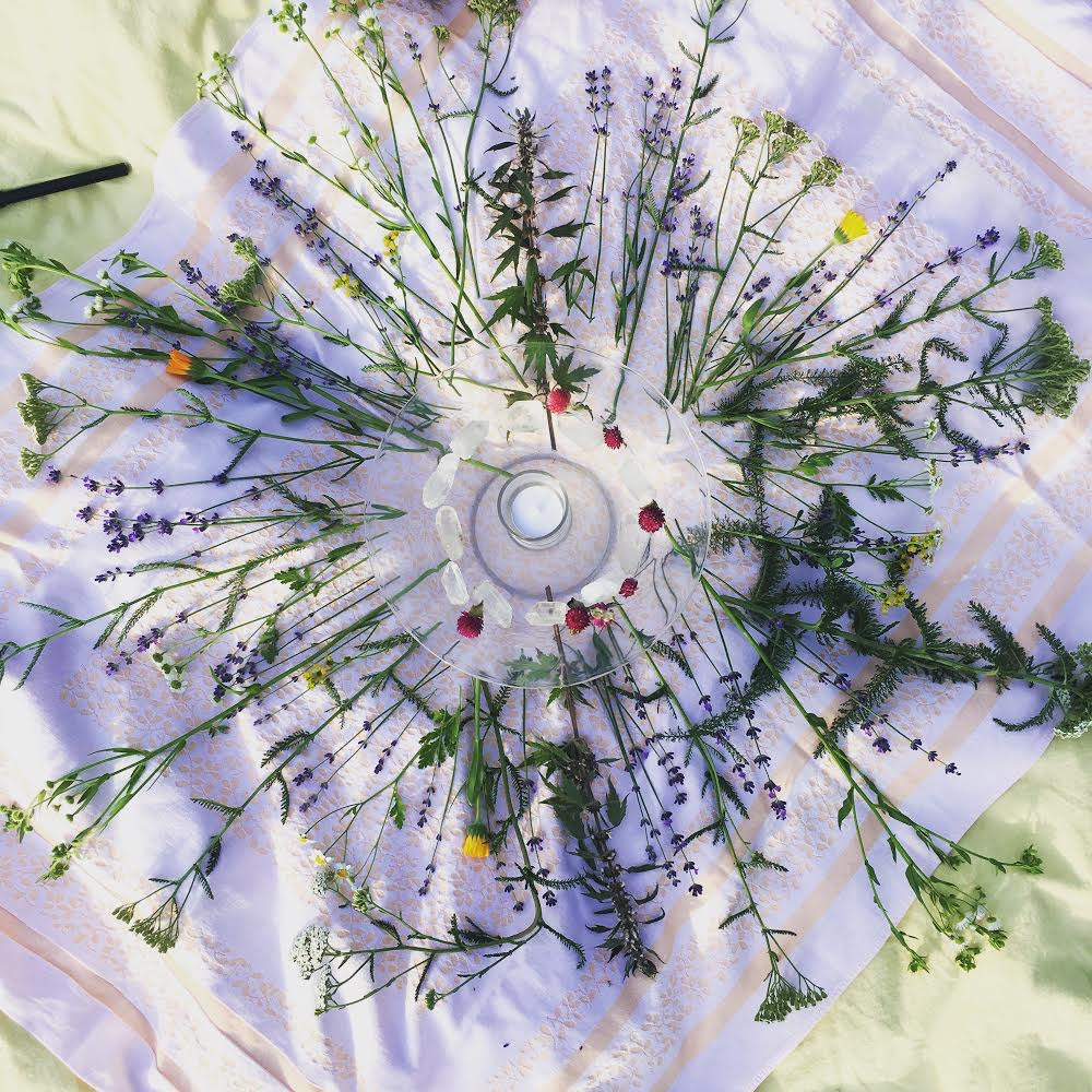 Connecting with Flowers at Summer Solstice