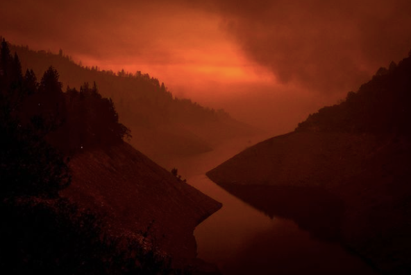 Wildfire Cycles and Resilience