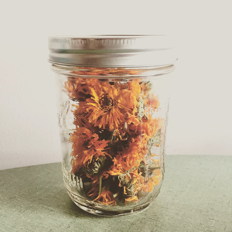Herbs of the Enneagram Type 7: Calendula