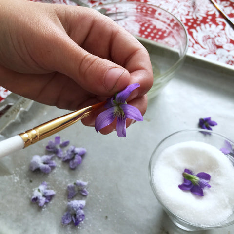 Painting eggwash on violets - photo credit B. Rubrecht