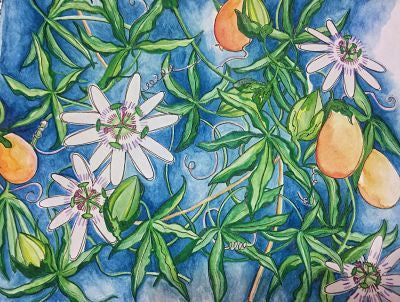 Passionflower Watercolor Bonnie Rubrecht