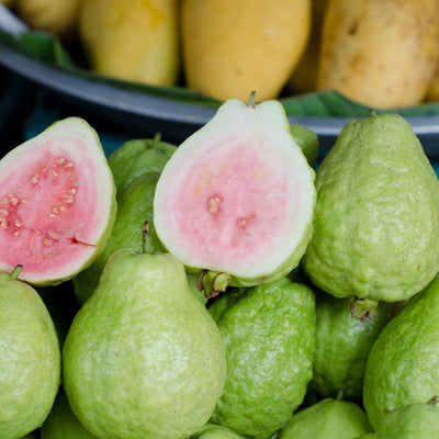 Guava Pink, 1 kg pack - Sharbatly.Club