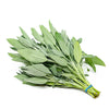Sage, fresh, 0.1 kg bunch - Sharbatly.Club