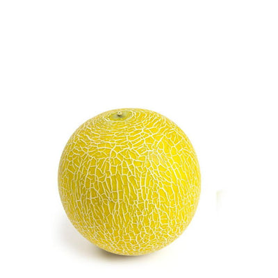 Melon Galia , single piece