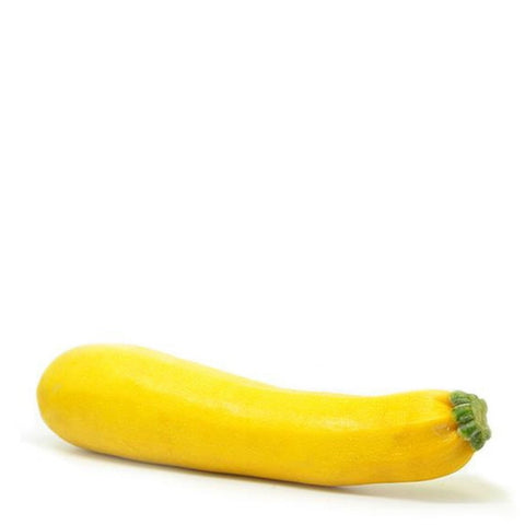 Zucchini, gold bar squash, extra-large, single piece