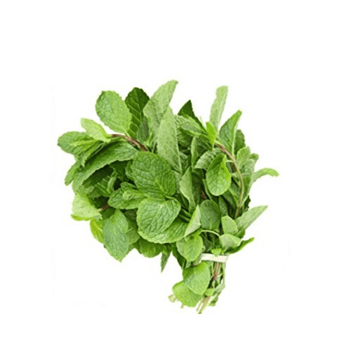 Mint, peppermint, 0.10 kg Bunch