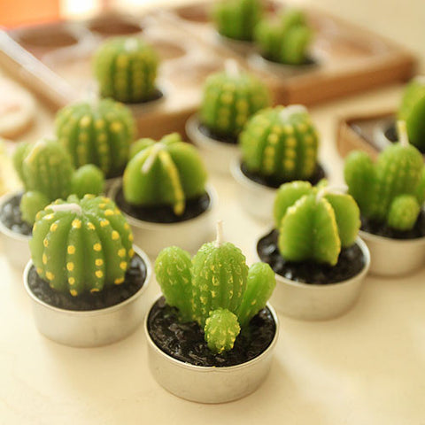 Mini Cactus Candle 6pcs/set