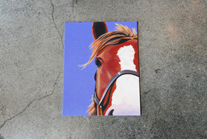 "Horse on Canvas 14"" X  10"""
