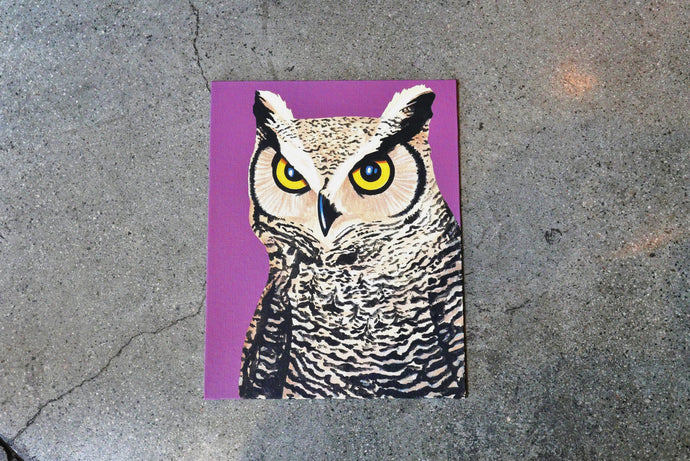 Owl on Canvas 11x14