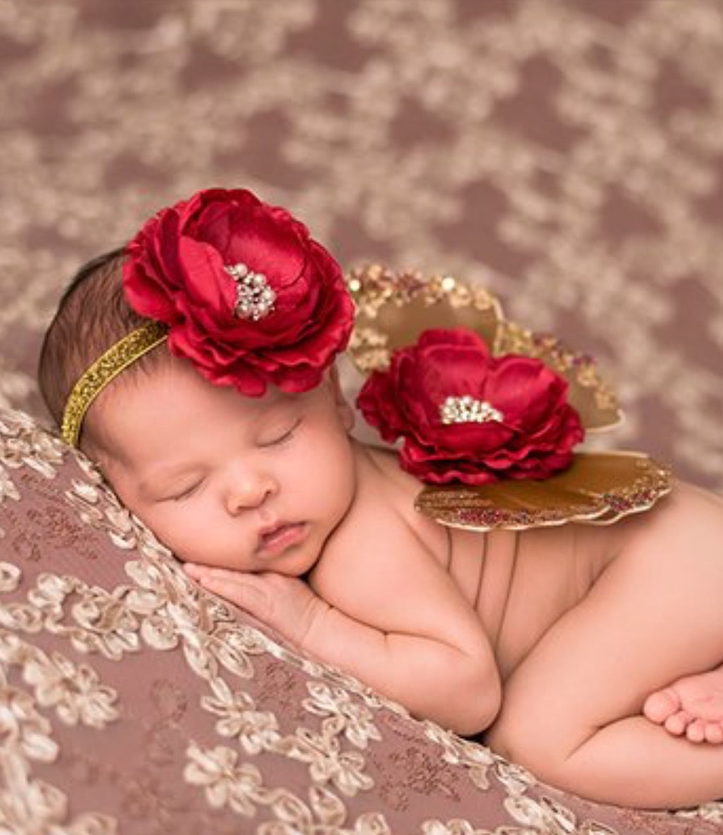 Infant - Brown & Deep Red Glitter Wing Set 0-6m