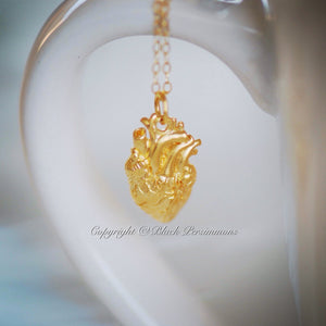 Your Heart is the Most Important Charm Necklace - Satin 24k Gold Plated Sterling Silver Anatomical Heart