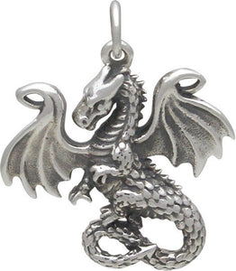 Drogon Necklace - Solid 925 Sterling Silver Year of the Dragon Auspicious Feng Shui Charm Pendant - Insurance Included