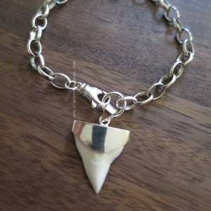 Shark Tooth Fossil Prionace Glauca Pendant Bracelet - Solid 925 Sterling Silver