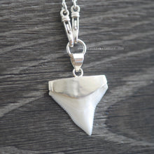Shark Tooth Fossil Prionace Glauca Pendant Necklace - Solid 925 Sterling Silver