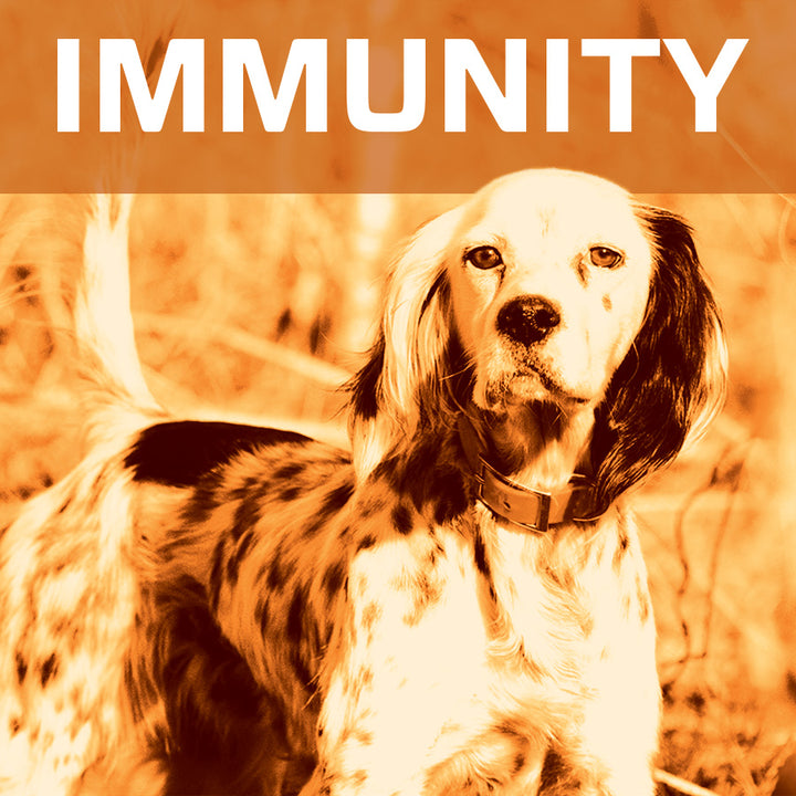 Immunity Reviews