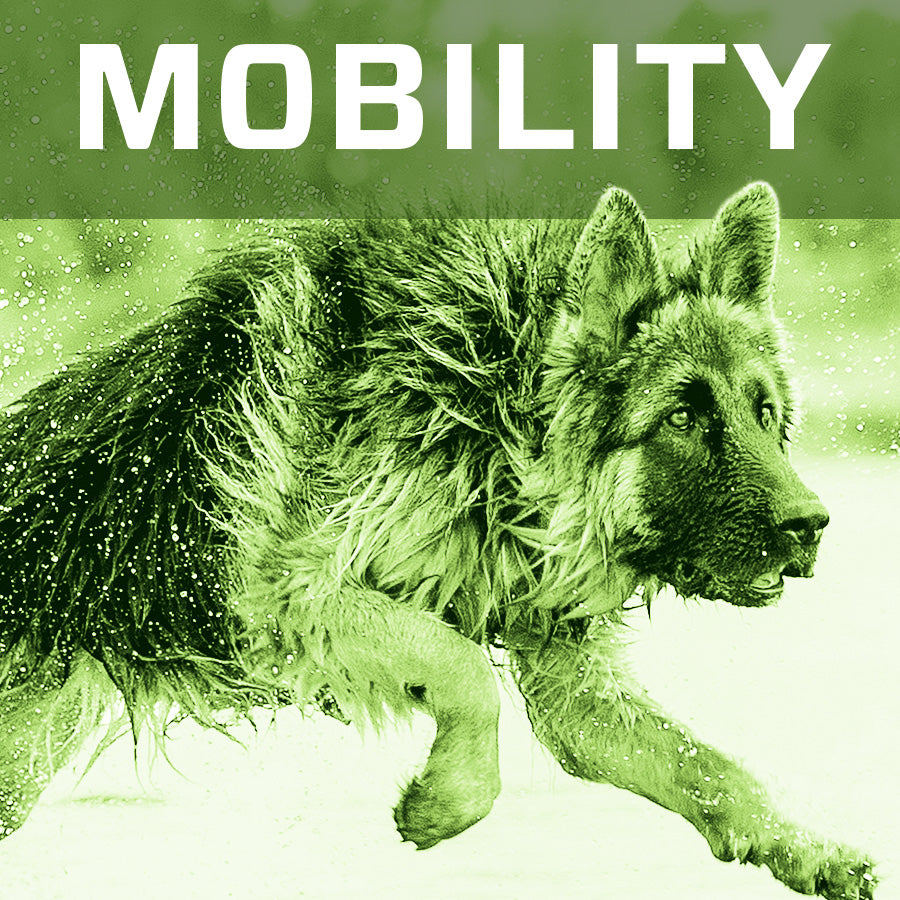 Mobility Reviews