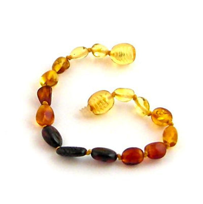 Baltic Amber Rainbow Bean