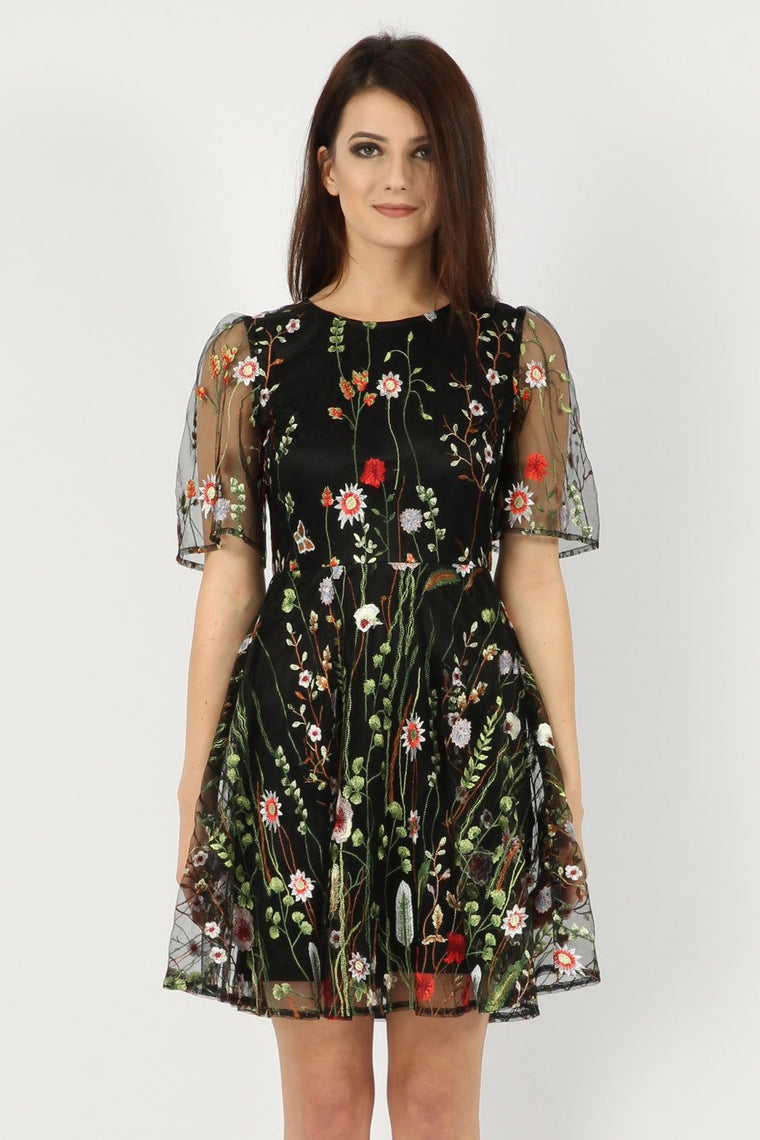 Embroidered Floral and Mesh Skater Dress