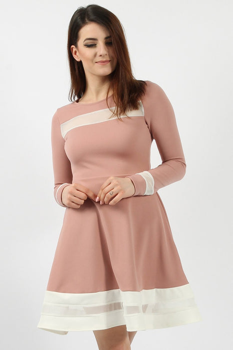 Mesh Panelled Rose Skater Dress
