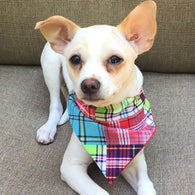 Dog Bandana - Scarf - Summer Plaid - Slides through the Collar - Pet Scarf - Dog Gift