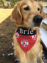 Boston Red Sox Personalized Dog Cat Bandana with Name