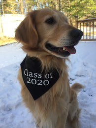 Class of 2020 Graduation Dog Bandana
