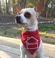 Home Town Custom Dog Bandana