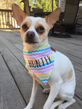 Easter Pastel Dog/Cat Personalized Bandana in Purple Glitter