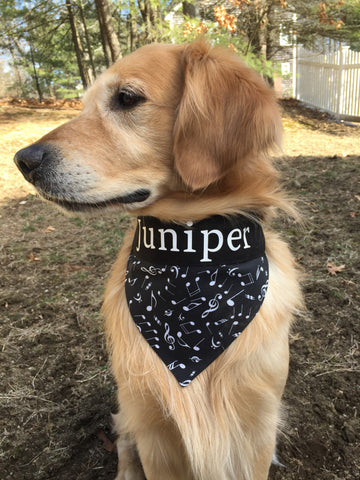 Music Notes Personalized Dog Bandana with Pet's Name
