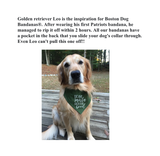 Dog Bandana - Lighthouses Personalized with Pet's Name