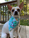 Surfer Dog Bandana