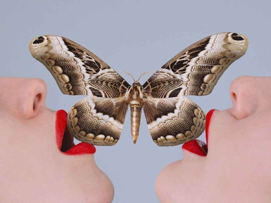 Tyler Shields - Butterfly Kiss