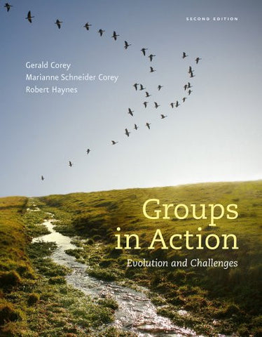 Groups in Action: Evolution and Challenges Workbook, 2nd Edition