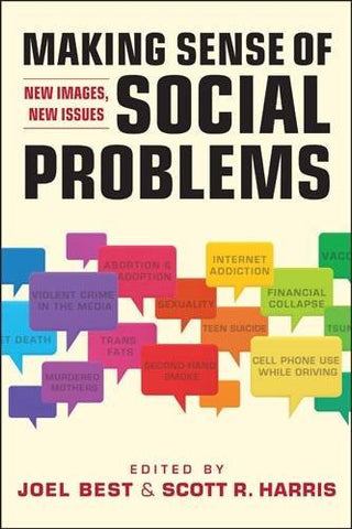 Making Sense of Social Problems: New Images, New Issues (Social Problems, Social Constructions)