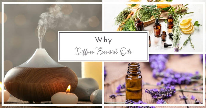 Why Diffuse Essential Oils In Your Workplace Or Home