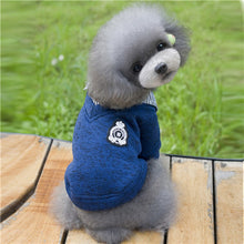 Puppy Dog Blue Sweater and Button-Up Shirt