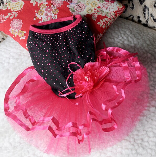 Princess Tutu Dress with Lace and Bow